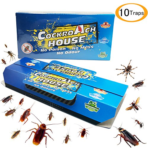 Becase Cockroach Traps with Bait, Sticky Paper House Roaches Captured Killer Safely-10 ()