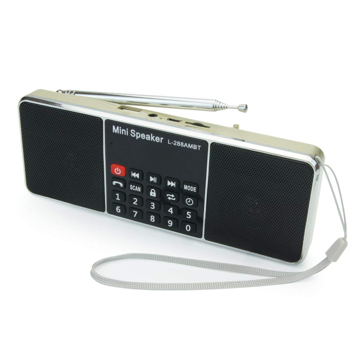 PRUNUS Portable AM FM bluetooth mp3 Long antenna radio with double magnetic speaker, stereo sound, AUX jack and sleep timer function. Stores stations automatically. Supports the following: Flash drive / Micro SD card / TF card (8GB, 16GB, 32GB, 64GB) to al
