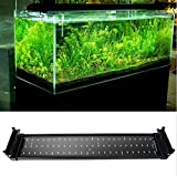 Hot Sale Aquarium Fish Tank Smd Led Light Lamp 11W 2 Mode 50Cm 60 White + 12 Blue Eu/Uk/Us Plug Marine Aquarium Led Lighting Aquario (19.74.12.4'', Black)