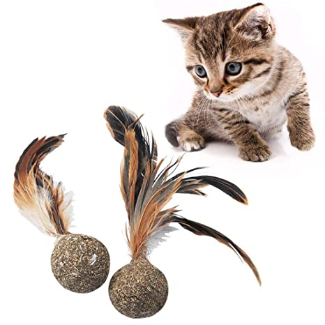 Fogun - Juguetes para Gatos y Gatos (Plumas Suaves, Juguetes interactivos)