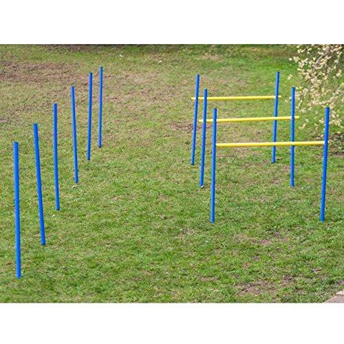 Dog Agility Trainings-Set 2 für Anfänger