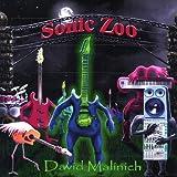 Sonic Zoo