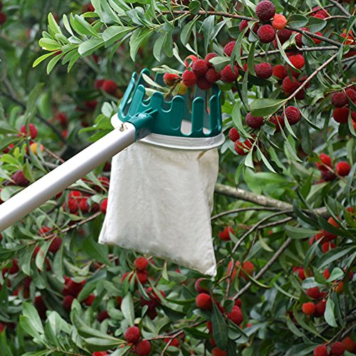 hanziup-fruit-picker-basket-head-with-sharp-blade-labor-saving-for-harvest-picking-apple-pear-peach-