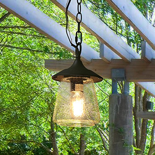 LOG BARN Outdoor Lantern Pendant Painted Black Metal with Clear Bubbled Glass Globe, Hanging Porch Light Fixture, 9.4