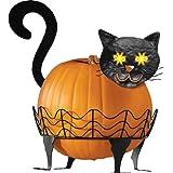 Black Cat Pumpkin Holder - 3 PC