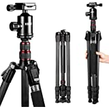 ESDDI 79inches Carbon Fiber Camera Tripod with 360° Panorama Ball Head, Monopod and Carry Bag, Portable Ultra Compact…