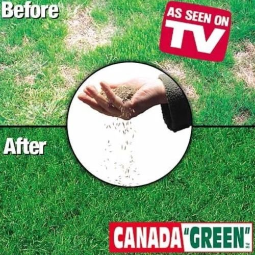Canada Green Grass Lawn Seed Mixture 4 LBS Bag ()