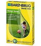Rasensamen Barenbrug Water Saver 1 kg - Great in Grass - Mischung für Trockenflächen Grassamen