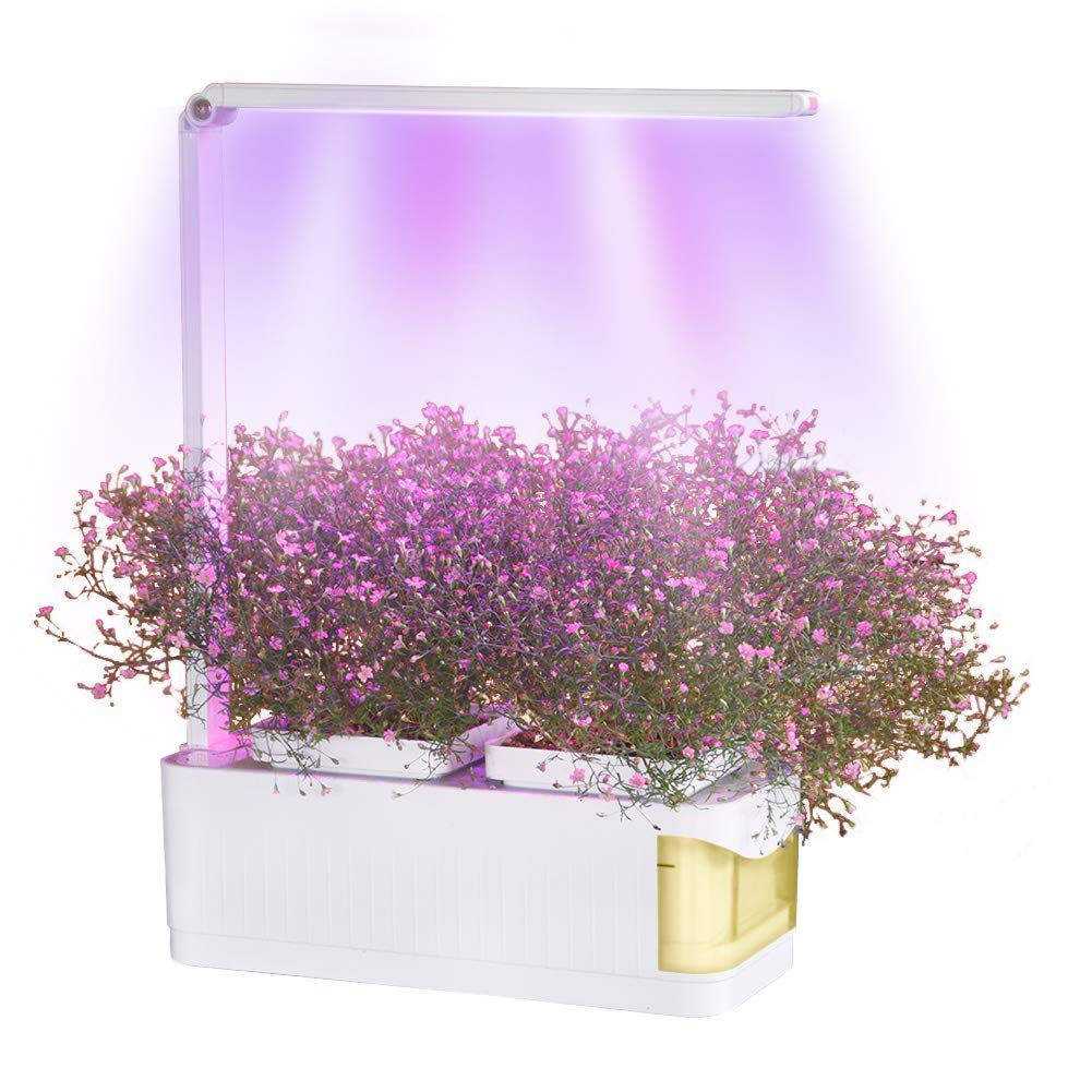 Indoor Smart Herb Garden Hydroponics Growing System, LED Grow Lights for Indoor Plants, Built-in Two Light Modes and Water Shortage Alarm, Automatic Smart Garden Kit Shungru (Yellow)