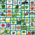 Heirloom Vegetable Seeds, 47 Variety Pack, Non Hybrid, Survival Seeds, Packed in Zip Seal Mylar Bag