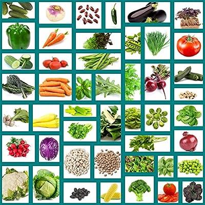 Heirloom Vegetable Seeds, 47 Variety Pack, Non Hybrid, Survival Seeds, Packed in Zip Seal Mylar Bag