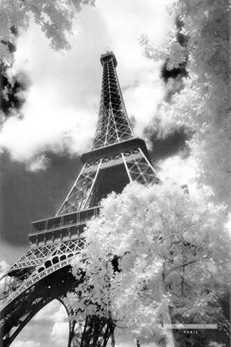 Eiffel tower parc du champ de mars art poster print 24x36 poster print