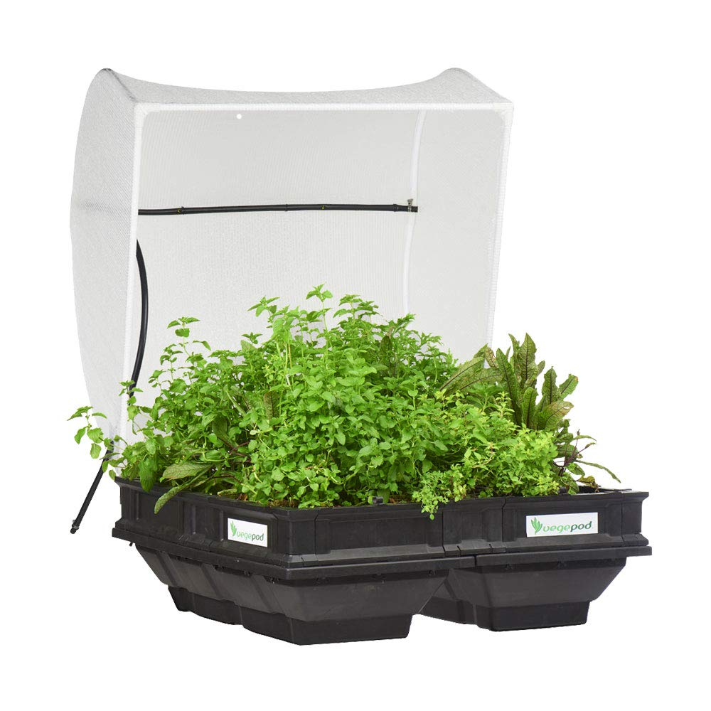 Vegepod - Raised Garden Bed Kit - Medium 39.4in x 39.4in (1m x 1m) Self Watering Container Garden with Protective Cover, Easily Raised to Waist Height, 10 Years Warranty