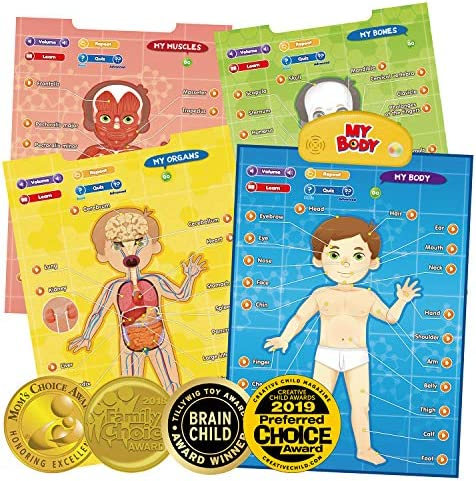 BEST LEARNING i-Poster My Body – Interactive Educational Human Anatomy Talking Game Toy System to Learn Body Parts, Organs, Muscles and Bones for Kids Aged 5 to 12 Years Old
