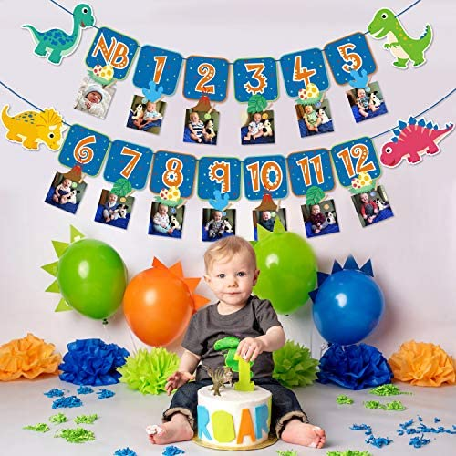 Faisichocalato Dinosaur 1st Birthday Monthly Photo Banner Baby Dino First Year Milestone Photo Banner for Roar Theme First Birthday Party Decorations Cake Smash Photo Props – The Super Cheap