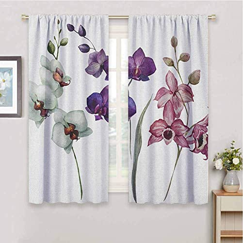 DIMICA Premium Blackout Curtains Watercolor Lovely Orchids Three Colors Blooming Flourishing Environment Theme 2 Panel Sets W108 x L84 Inch Cream Violet Dried Rose