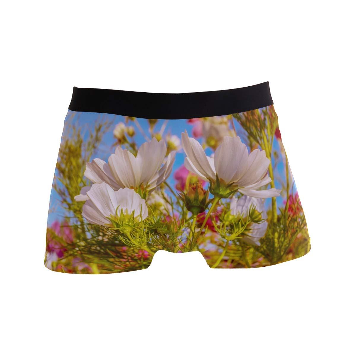 FAJRO Cosmea Flower Mens Regular Leg Boxer Brief Underwear