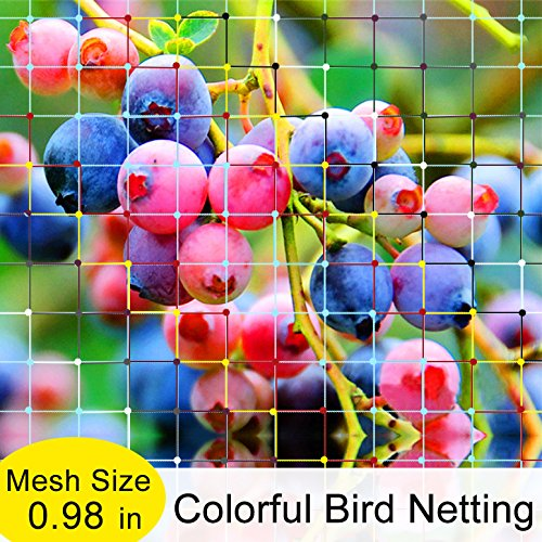 Zerone Garden Plant Netting,Green Anti Bird Net Garden Plant Fruits Fencing Mesh Protect Fruits from Rodents Birds 13 Ft x 33 Ft