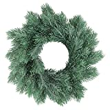 Northlight Frosted Pine Decorative X-Mas Wreath, 10'', Green