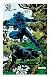Black Panther: Panther's Quest