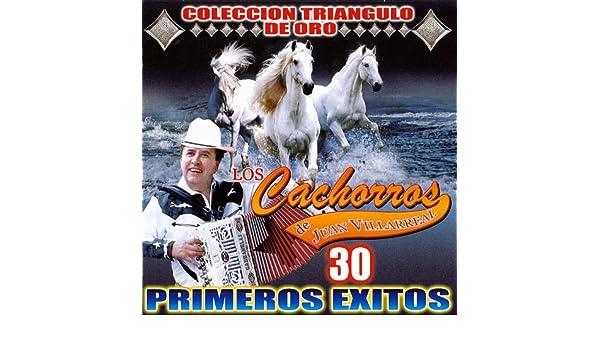 Los Cachorros De Juan Villareal Collecion Oro by Los Cachorros de Juan Villareal on Amazon Music - Amazon.com