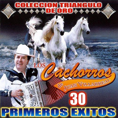 Los Cachorros De Juan Villareal Collecion Oro