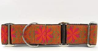 product image for Diva-Dog Martingale Dog Collar - Mexicali Sunset Pinwheel (Large)