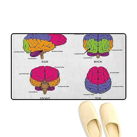 Amazon.com : zojihouse Educational Door Mat Increase Human ...