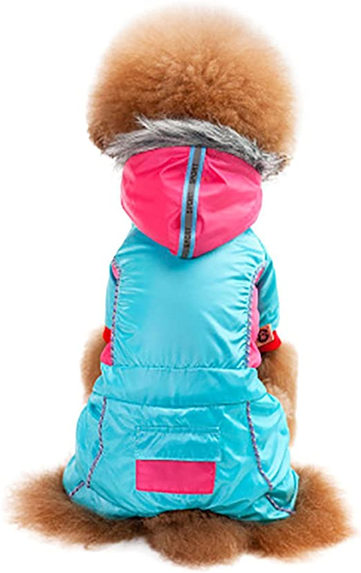 Amphia – Jersey para Gatos Navidad, Colorblock con Capucha de algodón Abrigo para Perros Ropa – Mascotas Perro Gato Caliente con Abrigo Grueso Sudadera Ropa bann Color Capucha Abrigo: Amazon.es: Productos para