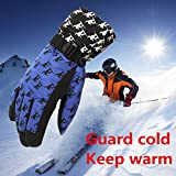 FidgetFidget Gloves for Outdoor Adult Winter Warm Waterproof Windproof Snow Snowboard Ski Sports Blue