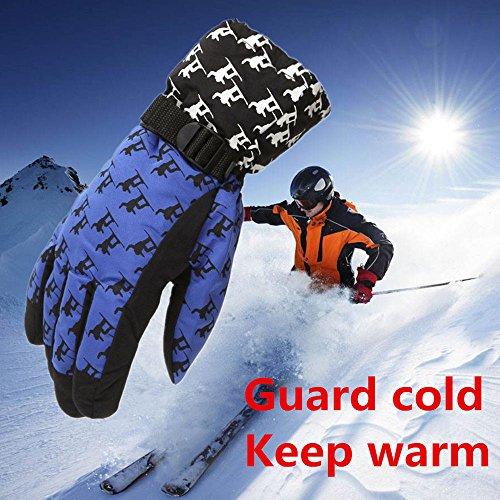FidgetFidget Gloves for Outdoor Adult Winter Warm Waterproof Windproof Snow Snowboard Ski Sports Blue by FidgetFidget