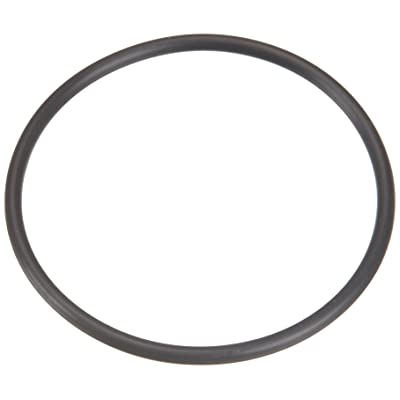 Pentair U9-362 Union O-Ring Replacement for select Sta-Rite Pool and Spa Filters: Garden & Outdoor
