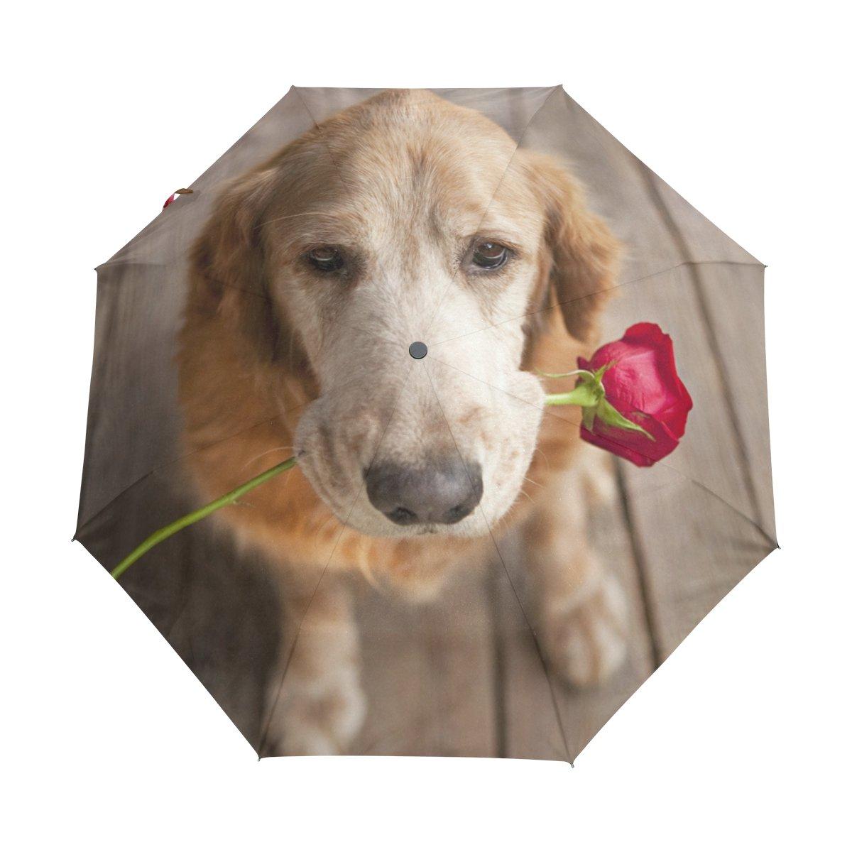 Funny Little Lovely Cute Baby Pig Folding Rain Umbrella Parasol Windproof Travel Sun Umbrella Compact