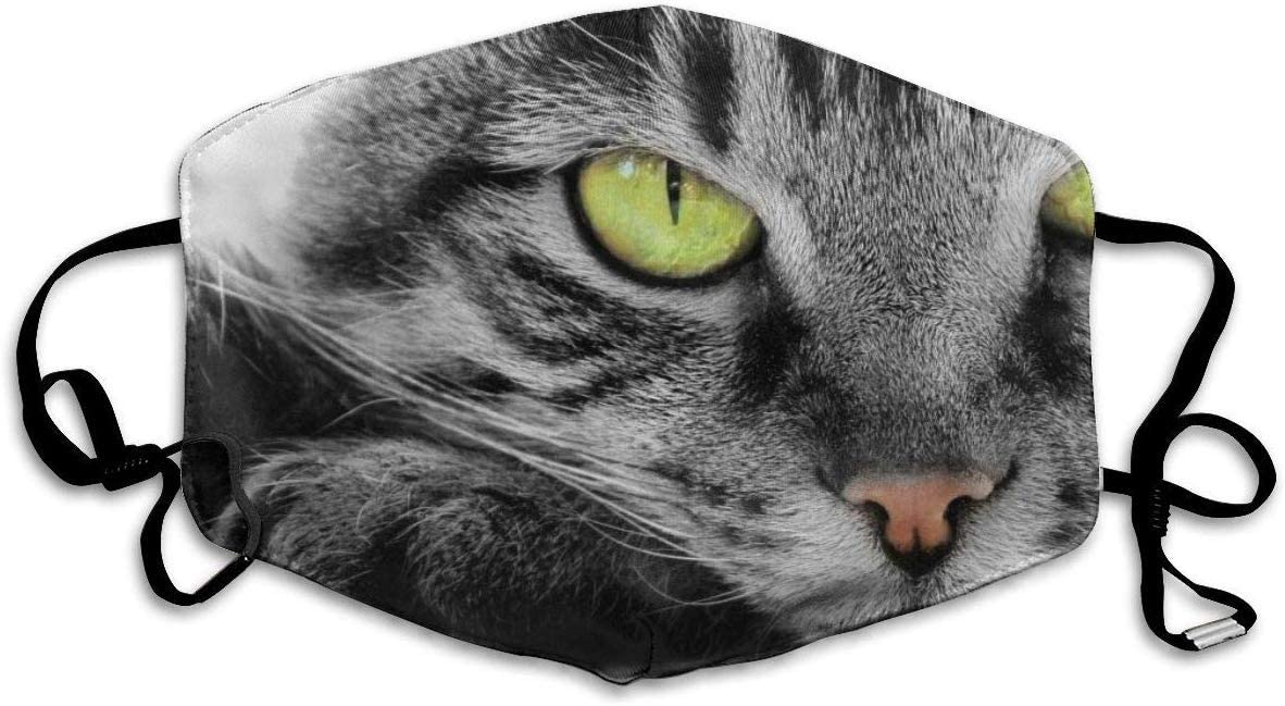 Golpeando al Gato Máscaras bucales Creativas para Adultos Seguridad Lavable 100% poliéster Máscaras faciales de Salud cómodas