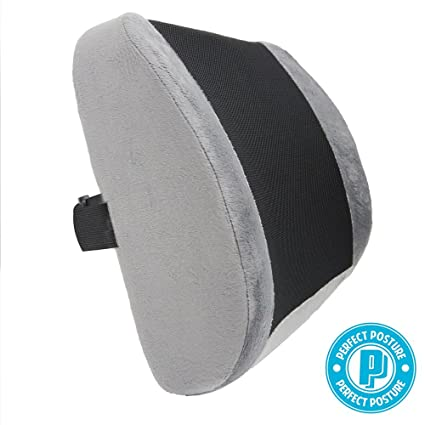 Perfect Posture Lumbar Support Cushion