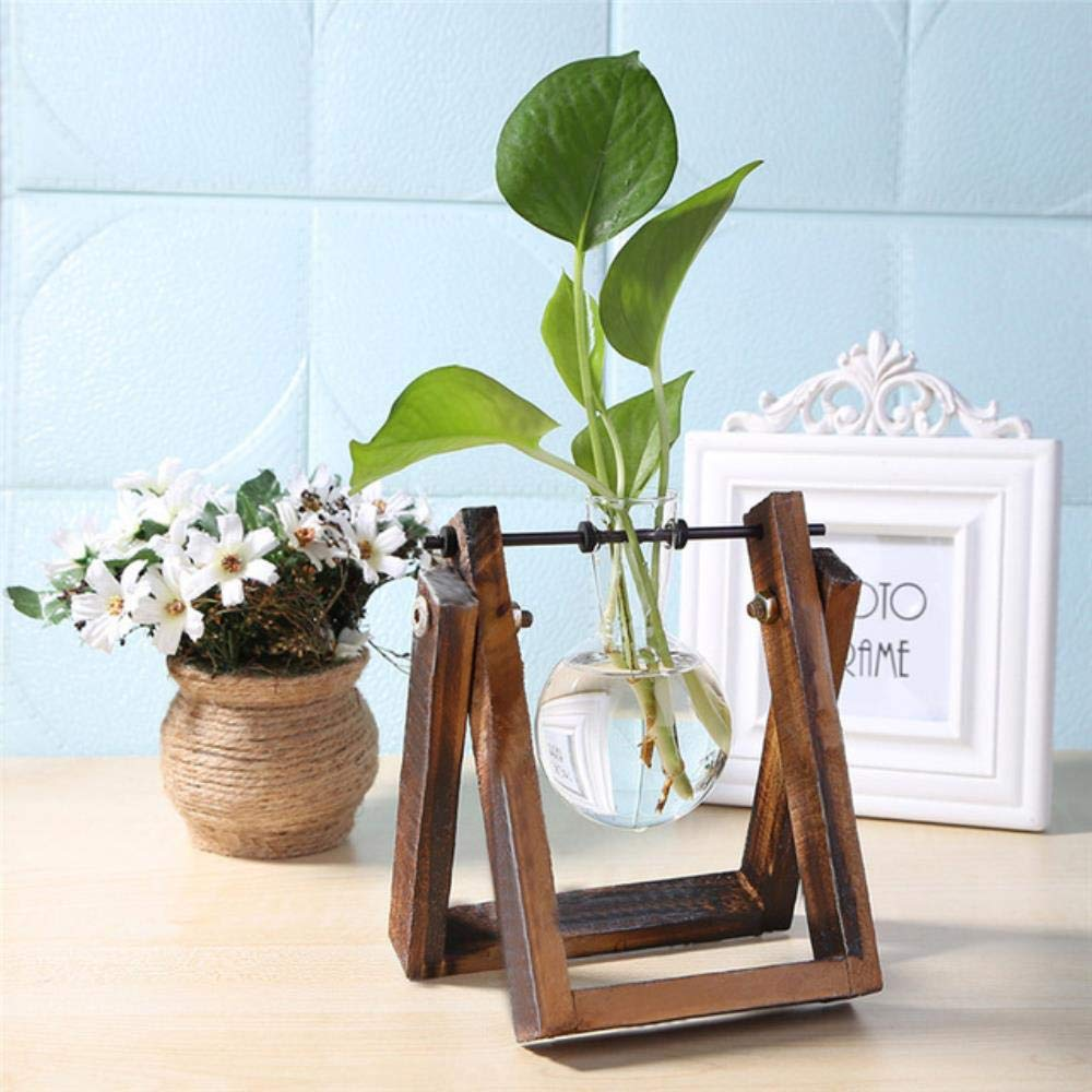 WYCYZJ Hydroponic Glass Vase Tabletop Bonsai Plant Flower Pot with Wooden Tray Ornamental Home Office Wedding Decoration, S Size: Amazon.es: Jardín