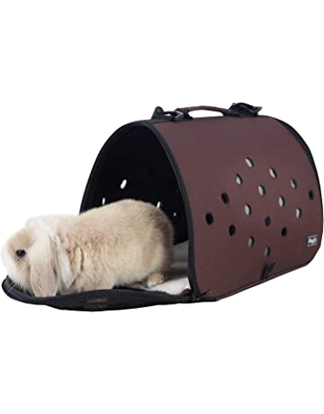 0853ff8cae Petsfit 16 X 9 X 9 Inches Pet Carrier EVA, Soft-Sided Pet Carrier
