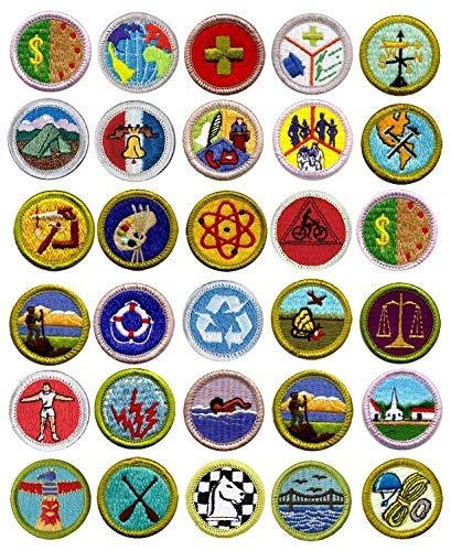 Eagle Scout Merit Badges Edible Toppers, Boy Scout Merit Badges Cupcake Toppers ()