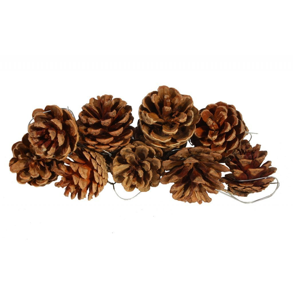 6 Pcs Pine Cones, BuycheapDG Retro Color Fir pine Cones Christmas Pine Cone Christmas Hanging Ornaments Xmas Tree Ornaments Party Supplies DIY Craft Home for Christmas Wedding Party Miniature Garden Decoration Made in China