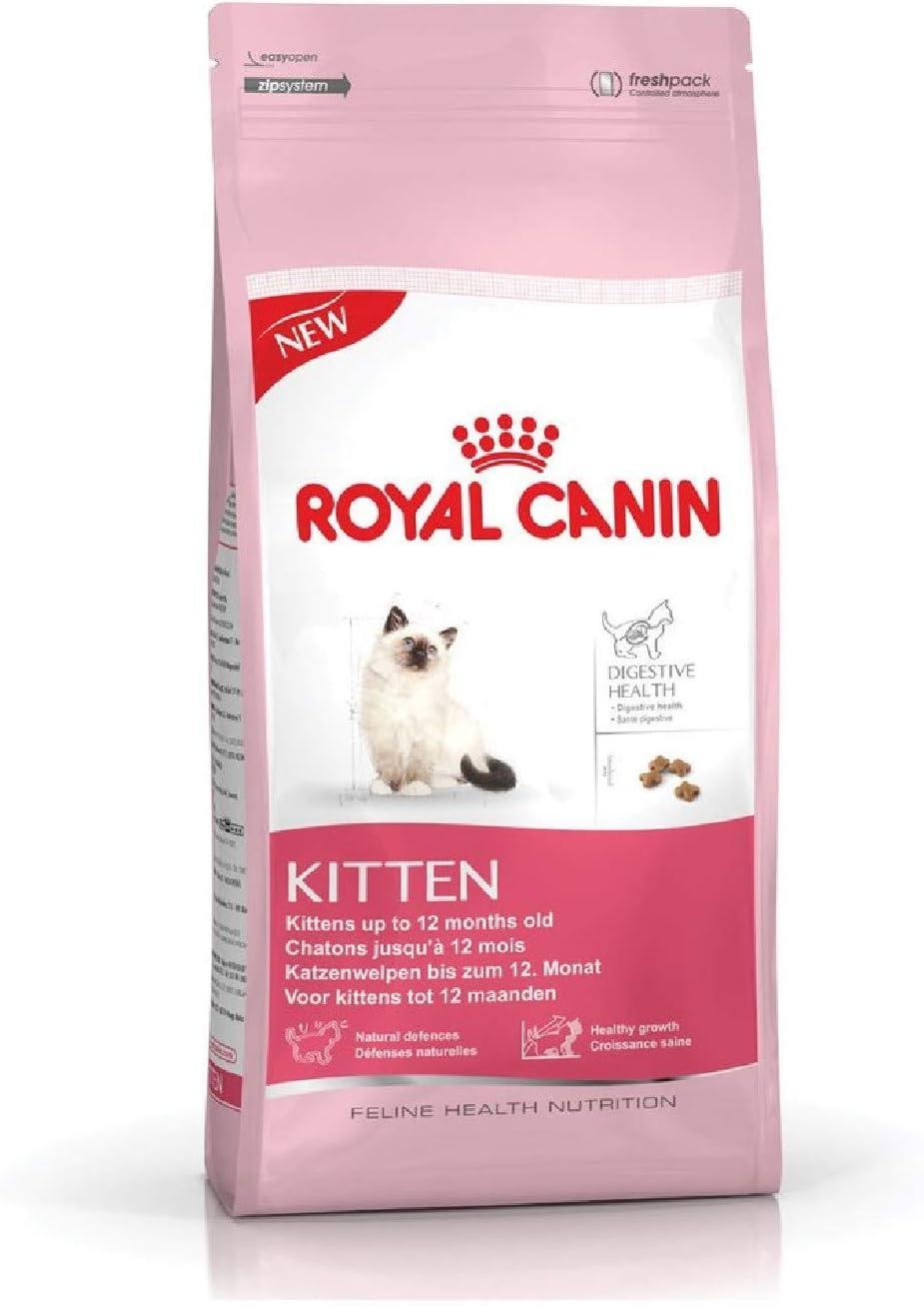 Royal Canin Kitten 10 kg: Amazon.es: Productos para mascotas