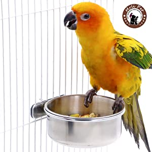 Mrli Pet Food & Water Bird Cup with Clamp Holder Stainless Steel Coop Cup Feeding Dish Feeder for Parrot Macaw African Greys Budgies Parakeet Cockatiels Conure Lovebird Finch Small Animal Cage Bowl