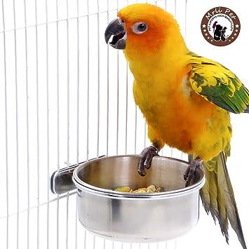 Amazon.com: Mrli - Comedero de acero inoxidable para pájaros ...