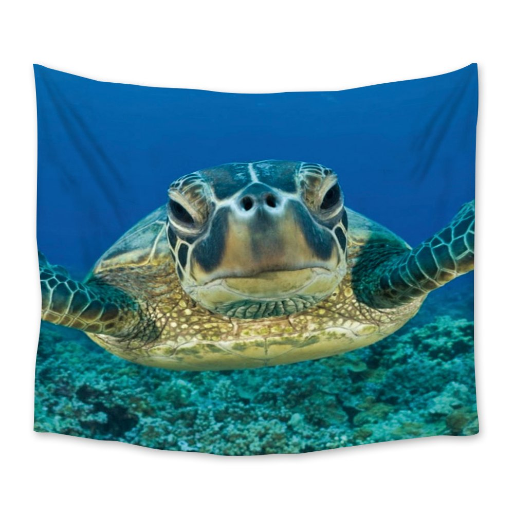 Chees D Zone Wall Hangings Tapestry Funny Ocean Animal Turtle Light Weight Fabric Throw Tapestries for Home Living Room Bedroom Dorm Art Decor