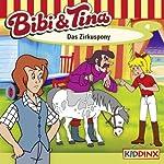 Das Zirkuspony (Bibi und Tina 4)   Ulf Tiehm