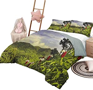 Forest Quilt 3 Piece Bedding Set Bedding 3-Piece King Bed Sheets Set, Rural Scenery Costa Rica Countryside Greenery Tropic Accents Botanical Soft and Breathable with Zipper Green Red Violet Blue