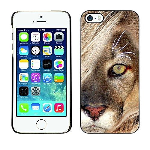 GooooStore/Housse Etui Cas Coque - Mane Lion Cub Feline Big Cat Nature - Apple iPhone 5 / 5S