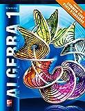 Algebra 1, Student Edition (MERRILL ALGEBRA 1)
