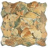 "ceramic tile floor SomerTile FEM18OTO Autumno Porcelain Floor and Wall Tile, 17.75"" x 17.75"", Brown/Beige/Grey/Green"