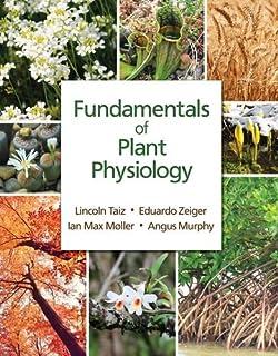 plant physiology 5b steward f c