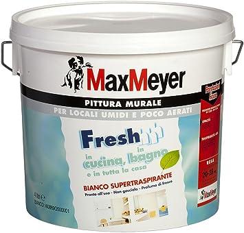 Max Mayer Pittura Murale Supertraspirante Pronta All Uso Alta Copertura Effetto Molto Opaco Resa 10 14 Mq Lt 4 Lt Amazon It Fai Da Te